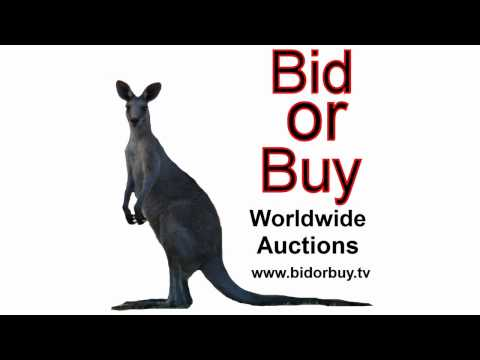 Bid Or Buy Online Auctions