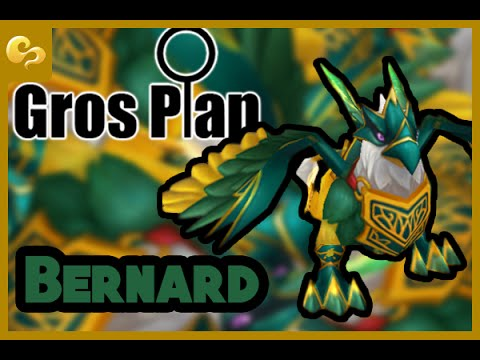 Summoners War - Gros plan - Bernard