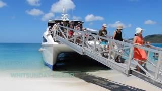 Whitehaven Beach & Hamilton Island Day Tour, QLD | Experience Oz