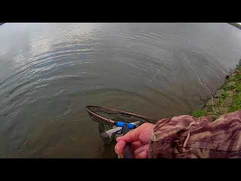 A+M TROUT FISHERY At Newhouse Fri 3rd Nov 2017