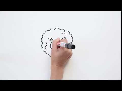 Как нарисовать овечку? | Учимся рисовать маркером BioMio