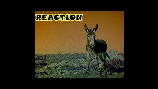 الشاب T R A S H - كوتوكوتو. [REACTION]