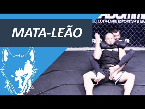 How to do the Rear naked choke   Brazilian Jiu jitsu and luta livre