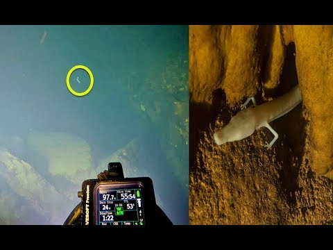 When Divers Explored This Underground Lake, They Discovered A Dragon Lurking Within Its Depths