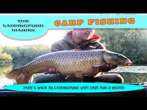 Carp Fishing: Laddingford Diaries Part 5: Back To Laddingford For 2 Nights Carp Fishing