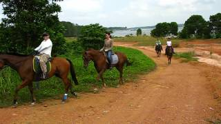 7. Horse Riding Outdoor Trail