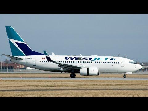 Media left THIS out of disruptive WestJet passenger story