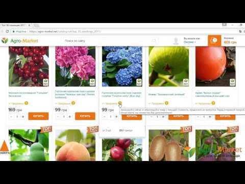 Agro-Market.net   Как оформить заказ   Обучающее видео