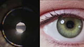 Computer Vision Nanodegree Program