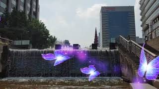 [13HDO] Beautiful Fountain, Se…