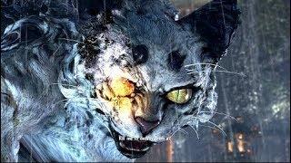 Nioh (PS4) - босс Бьякко. Без комментариев.