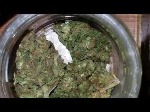 Fresche Special Sauce CBD Hemp Flower Review
