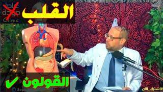 مهم جدا لازم تفرق أعراض القلب وأعراض القولون {خد بالك}(٢٦) دكتور جودة محمد عواد