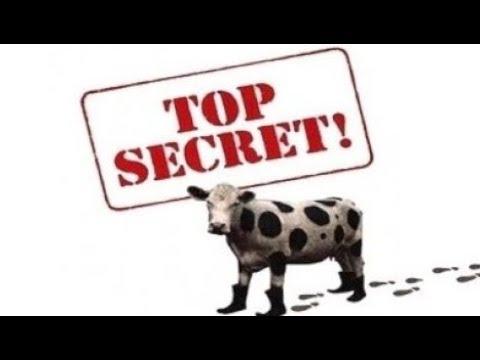 Top Secret!   V.O