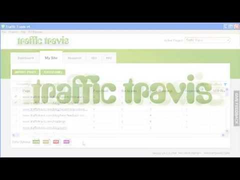 Traffic Travis: Best SEO Reporting Tool - Amazing PROFITS Online