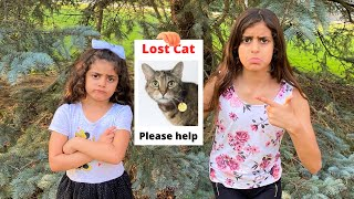 Deema and Sally lost our Cat story