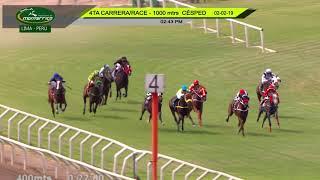 Vidéo de la course PMU MAIDEN TURF