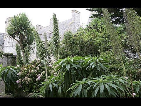 visite d couverte d 39 un jardin extraordinaire dans la manche youtube. Black Bedroom Furniture Sets. Home Design Ideas