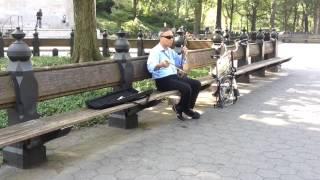 Erhu Performer Central Park