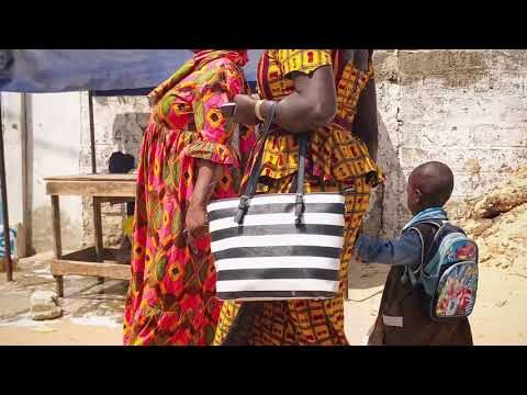 Travel Year in Review 2017  - Senegal