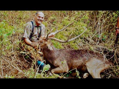 Hunting Rusa deer in New Caledonia part 13