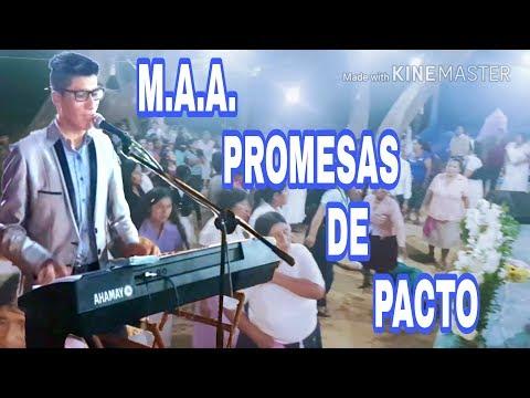 M.A.A. Promesas de Pacto 2018