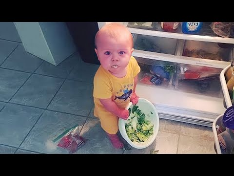 Funny Sneaky Babies Steal Everything #2 - Funny Baby Videos