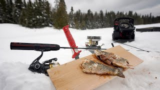 *Wild Trout* Remote Catch and Cook in the Snow