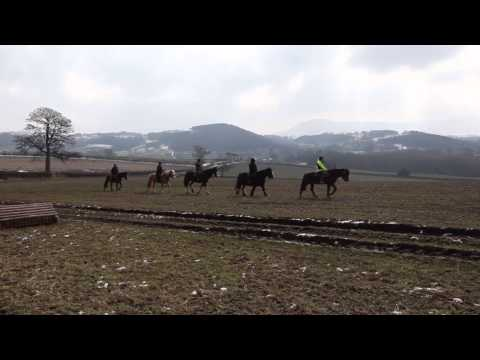 Greentraveller Video of Tregoyd Mountain Riders, Powys, Mid Wales