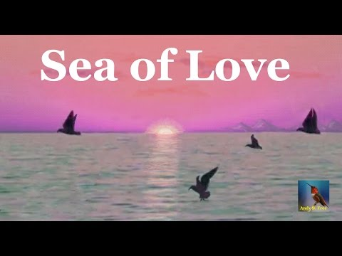 "Andy B. Free - Sea of Love - Soft Rock Love Song - from the album ""My Way or the Free Way"""