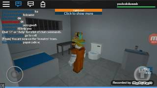 The ecape with a book (Roblox)