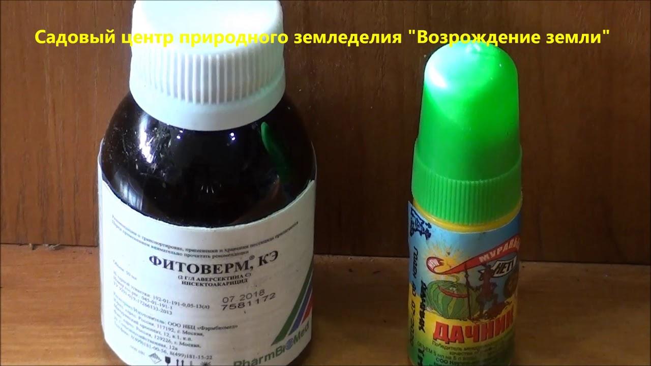 Биологические, природные препараты и удобрения от насекомых вредителей