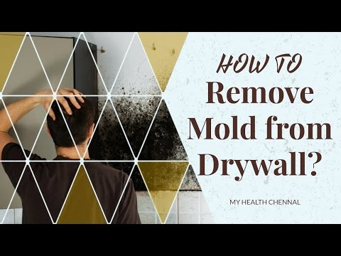 How to Remove Mold from Drywall? - Ways to Remove Mold and Mildew