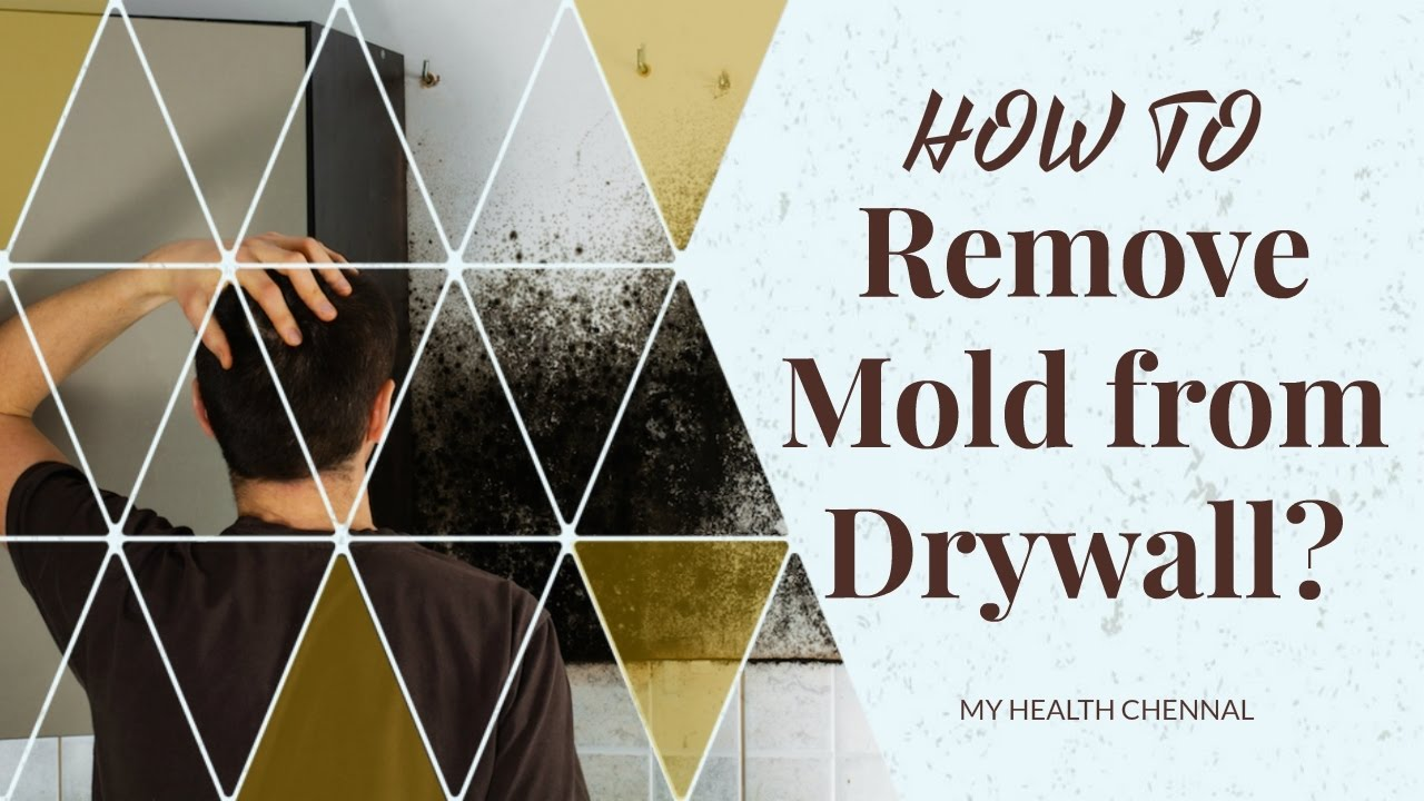 How to remove mold from drywall ways to remove mold and - What to do about mold ...