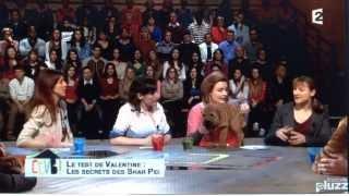 Le Shar-peï Avec Stéphane Bern Et Valentine - Ccvb Du 4 Mars 2014