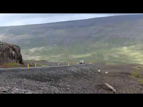Iceland travel party 2