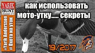Вся страшная правда и секреты про Мото-утку на охоте!