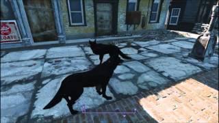 Fallout 4  игра за собаку