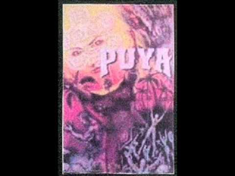 Puya Bridge (Alternate mix)