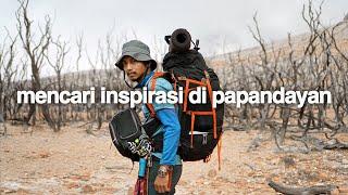 Ide Berkeliaran (Gunung Papandayan, Jawa Barat)