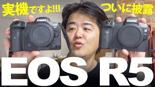 キヤノン EOS R5 実機ファーストインプレッション世界初!EOS R6 と新しいRFレンズ群もちょっとだけ見てきたぜ