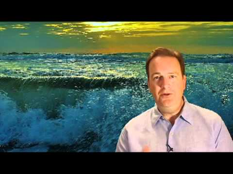 Selling Food Retailers, Distributors, And Foodservice With Tim's Wave Selling System