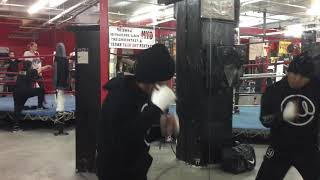 Marlon Tapales trains at Charlo-Hogan open workout