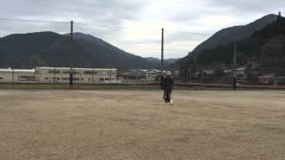 萩モンキードッグ訓練。模擬試験を行いました。