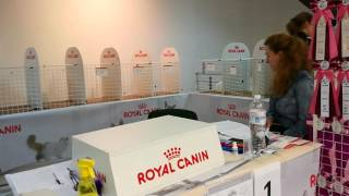 Выставка одесса морвокзал Экспертиза Кузя на RUI Baby Salon Odessa-Mama 19-11-2016 05