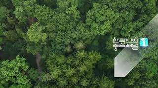[KBS 9시 뉴스 아이디] 국립수목원 2020-08-05