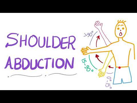 Shoulder Abduction | Muscle Action | Anatomy Upper Extremity ��