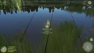 Сазан на озере | Русская рыбалка 3 : Огненная земля
