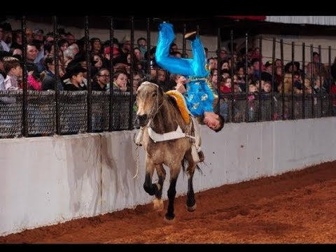 flipping on horses  FIESTA OF THE SPANISH HORSE 2017