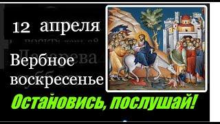 12 апреля Вербное воскресенье Евангелие дня с толкованием